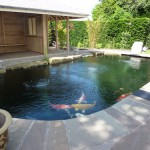 Stunning koi pond using ERIC Filtration units