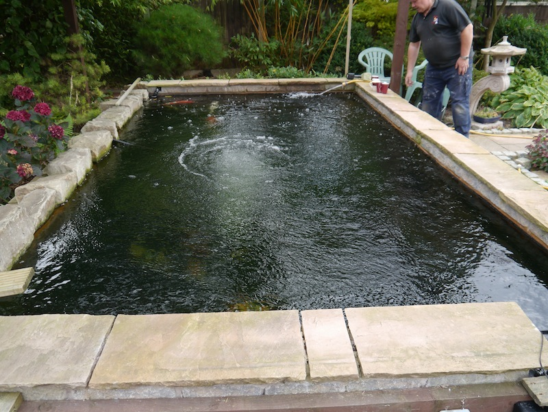 Eric koi pond filtration owners reports for Square fish pond
