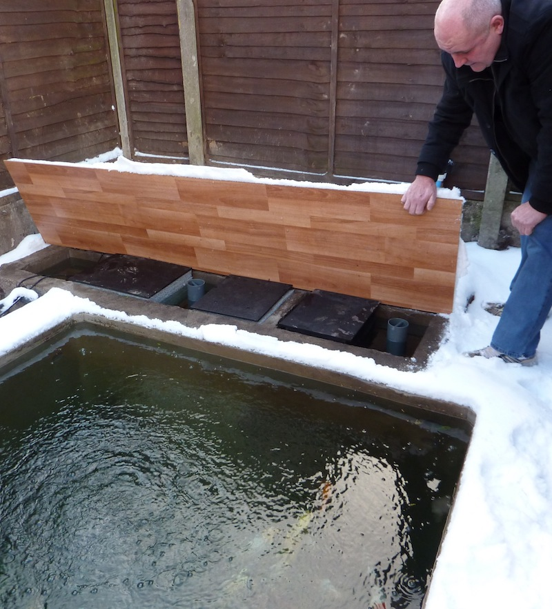 Eric koi pond filtration happy birthday to eric for Pool koi manchester