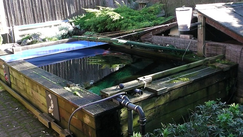 Eric koi pond filtration happy birthday to eric for Koi pond builders yorkshire