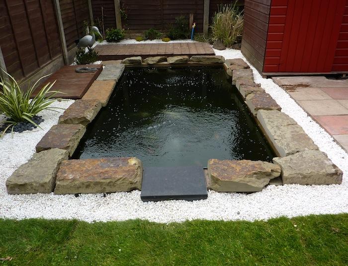 Eric koi pond filtration eric update for Pool koi manchester