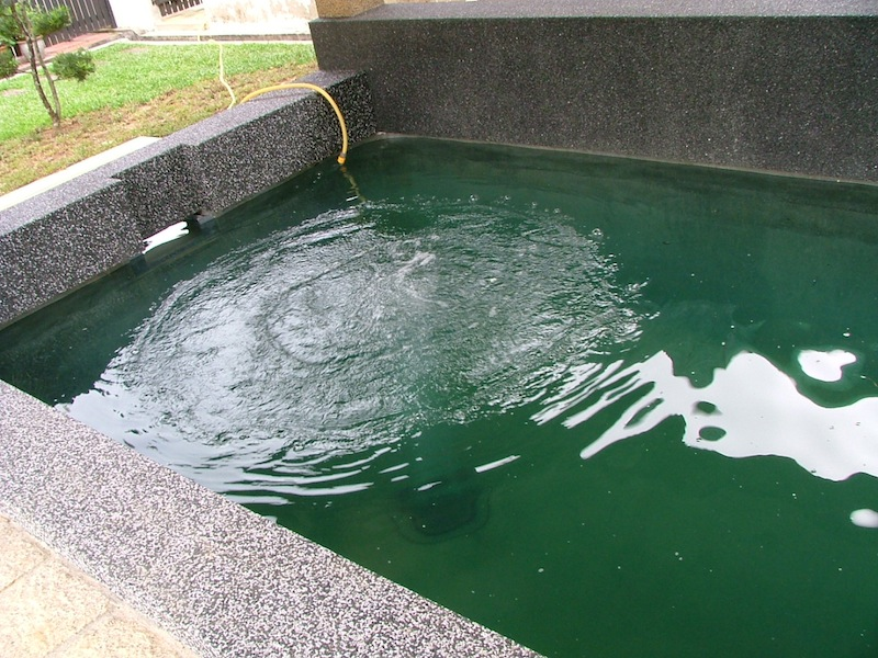 Aeration for koi pond filtered by ERIC Pond Filters