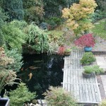 Picture of Koi pond with new ERIC Four pond filtration