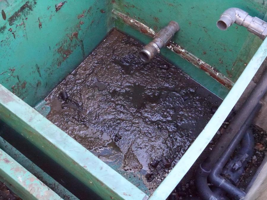 Close up shot of the waste inside koi pond filter