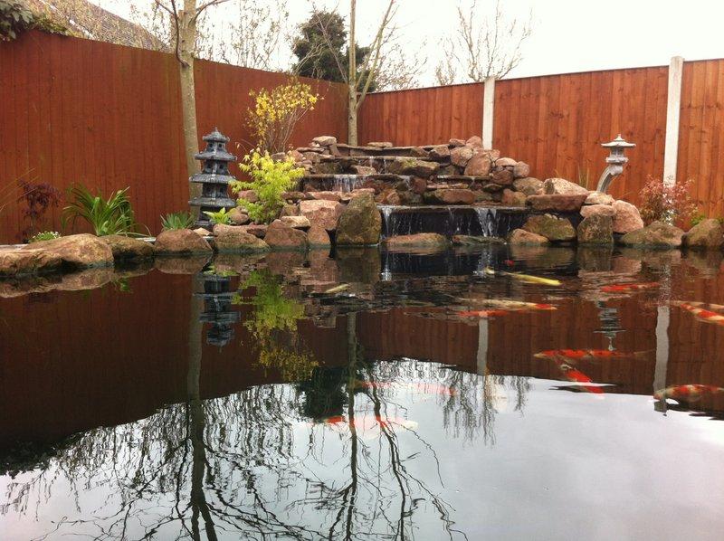 Beautifully finished koi pond