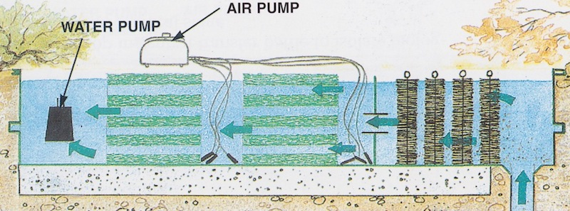 Pond filtration koikichi for Pond filtration system diagram