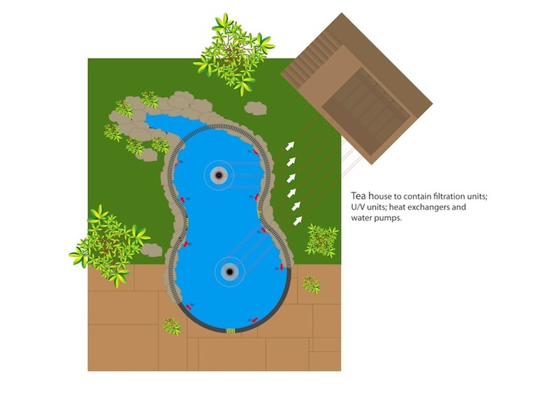 Original Diagram of Pond