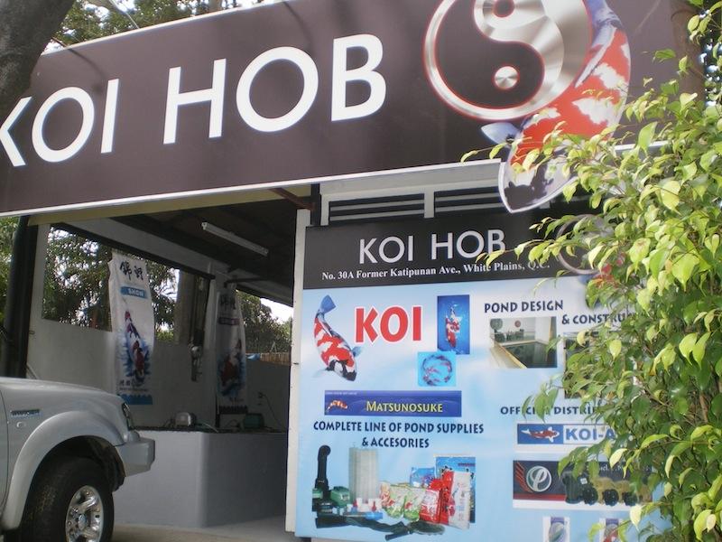 Koi Hob ERIC Distributor