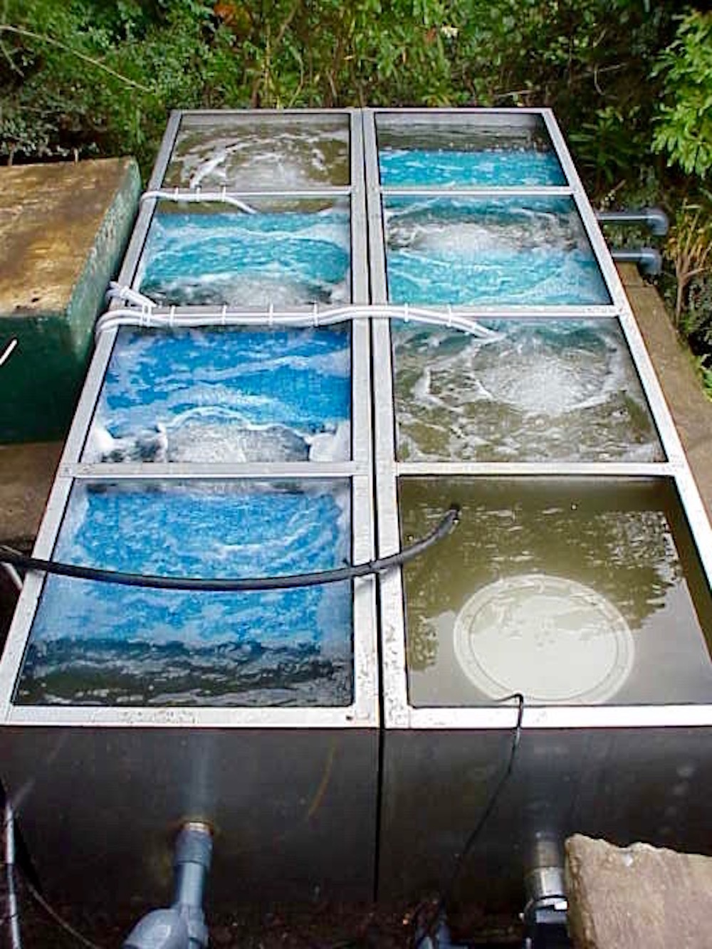 Eric koi pond filtration eric pond filters the for Pond filter system design