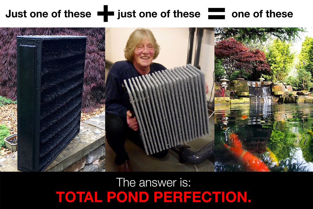 total-pond-perfection